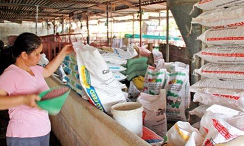 Ai đang thao túng thị trường thức ăn chăn nuôi?